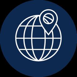 International network icon
